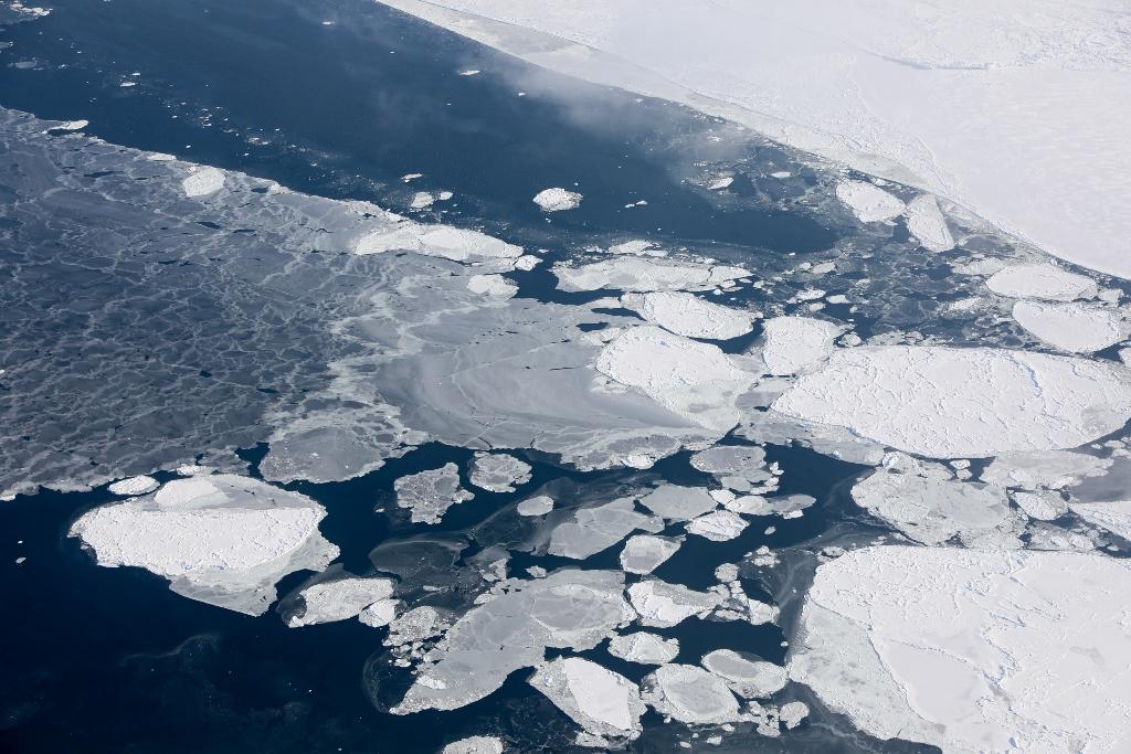 Image result for гренландия лёд учёные